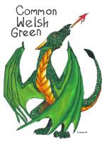 Common_Welsh_Green_by_Mathas