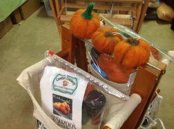 Pumpkin Kits