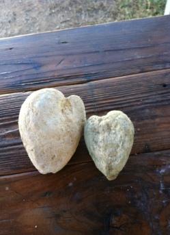Actual Texas Hearts