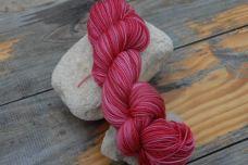 Scarlet Pea